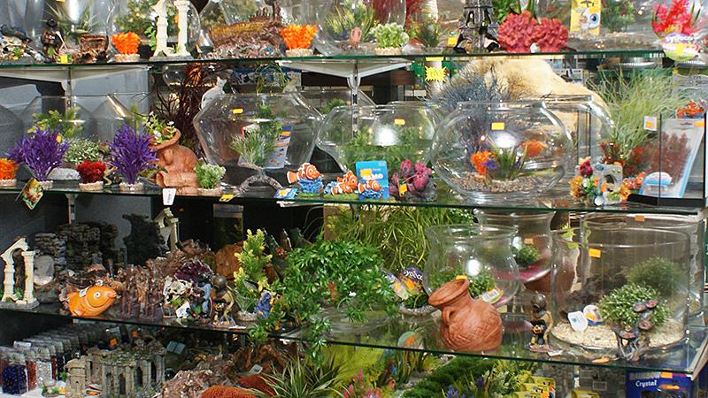 Design Aquarium Kast : Aquarium